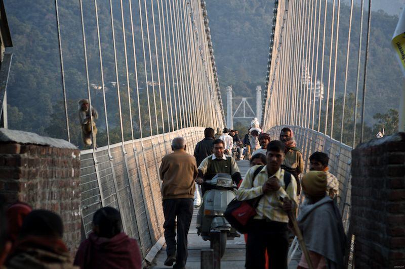 ram jhula bridge again