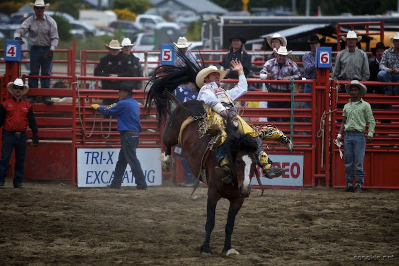rodeo rider